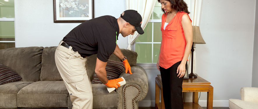 Rancho Santa Fe, CA carpet upholstery cleaning